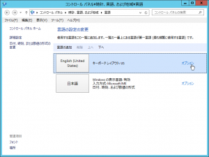 "Step 6: Select the ""option"" menu of ""English"" (in Japanese, ""オプション"")"
